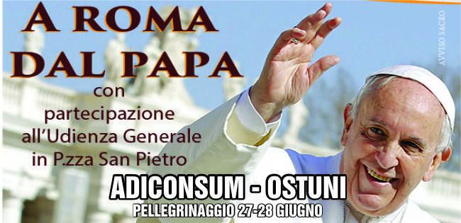 Pellegrinaggio dal Papa